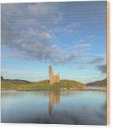 Ardvreck Castle - Scotland Wood Print