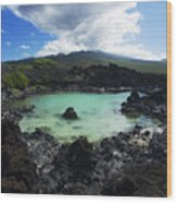 Ahihi Kinau Natural Reserve Wood Print
