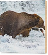Alaska Brown Bear Wood Print