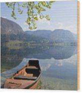 Alpine Moods Wood Print