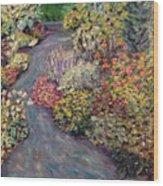 Amelia Park Pathway Wood Print