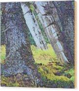 Ancient Totems Of Haida Gwai Wood Print