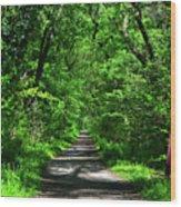 Appalachian Trail In Maryland Wood Print