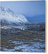Arctic Reflections Wood Print