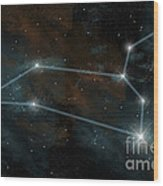 Artists Depiction Of The Constellation Wood Print