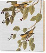 Audubon: Warbler Wood Print