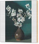 Australian Almond Blossom Wood Print