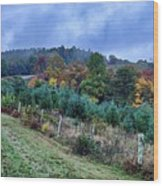 Autumn Colors In The Blue Ridge Mountains Wood Print