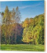 Autumn Colors Of Nature Wood Print