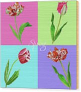 Background With Tulips Wood Print