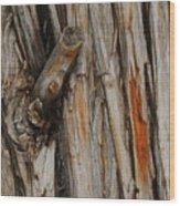 Bark Wood Print
