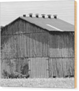 Barn In Kentucky No 71 Wood Print