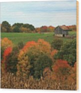 Barn On Autumn Hillside  A Seasonal Perspective Of A Quiet Farm Scene Wood Print