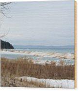 Beach And Ice Wood Print