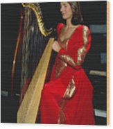 Beautiful Harp Player Wood Print