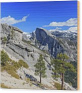 Beauty Of Yosemite Wood Print