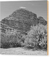 Big Bend National Park Wood Print