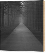 Bikeway Wood Print