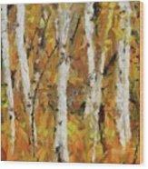 Birch Trees In Autumn Wood Print