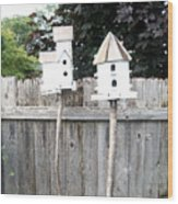 2 Bird Houses And A Fence Wood Print