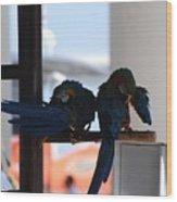 2 Birds Wood Print