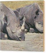 Black Rhinocerous Wood Print