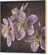 Blackberry Flowers Wood Print