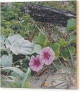 2 Blooms Wood Print