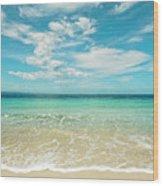 Pristine Blue Paradise Wood Print