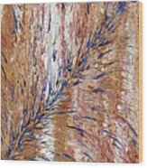 Blue Streak Wood Print