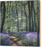 Bluebell Path Wood Print
