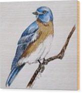 Bluebird Guardian Wood Print