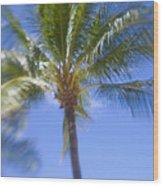 Blurry Palms Wood Print