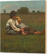 Boys In A Pasture Wood Print
