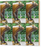 Bronze Statue Sculpture Of Bear Clapping Fineart Photography From Newyork Museum Usa Fineartamerica Wood Print