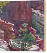 Canyon View Wood Print