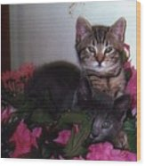2 Cats In The Flowers Wood Print