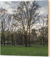 Central Park Views  Wood Print
