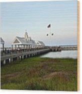 Charleston Waterfront Park During Sunset Wood Print