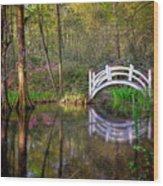 Charlston Sc - Magnolia Plantations And Garden Wood Print
