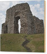 Christchurch Castle Wood Print