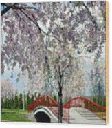 City Lake Park Wood Print