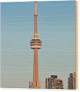 Cn Tower Toronto Wood Print