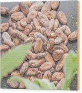 Cocoa Beans Wood Print