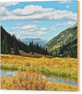 Colorado Mountain Lake In Fall Wood Print