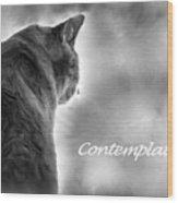 Contemplation Monochrome Wood Print