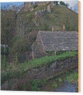Corfe Castle Wood Print