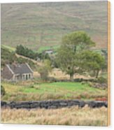 Cottage At The Foothill Of The Colorful Connemara Mountains Ireland  Wood Print