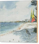 Blue Heron And Hobie Cats, Crescent Beach, Siesta Key Wood Print