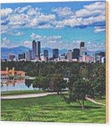 Denver City Park Wood Print